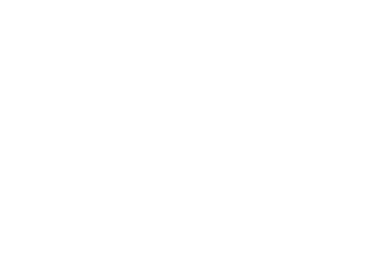 Professional technology and knowhow is the core asset of Microfriend